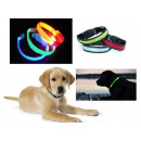 wholesale Pet supplies: COLLAR LED  emitting FOR PSA CAT rozm.L