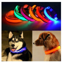 Dog collar for dog dogs