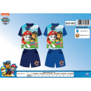wholesale Licensed Products: Paw Patrol T-shirt  & shorts (beach kit)