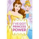 Polar Duvert Disney Princess , Princess 100 * 150c
