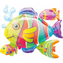 Tropical Fish, Tropical Fish Foil Balloons