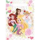 Disney Princesses Gift bag of 10 pieces