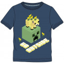Minecraft kids short t-shirt, top 6-12 years