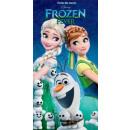 Disney frozen , Ice Cream Bath Towel