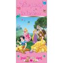 Disney Princess , Princess Poster voor deur 76 * 1