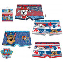 Paw Patrol , Paw Patrol child boxer shoe