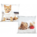 Cat, The Cat pillowcase 40 * 40 cm
