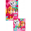 Hand Towel Wiper Towel Set Paw Patrol