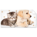 Gattino, telo bagno per cani, telo mare 70 * 140