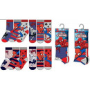 wholesale Socks and tights: Children's Socks Spiderman , Spiderman 23-34