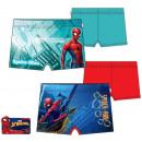 ingrosso Prodotti con Licenza (Licensing): Spiderman ,  costume da bagno  dei bambini dello ...