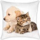 Poduszka kotek, poduszka dekoracyjna 40 * 40 cm