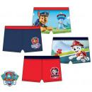 Paw Patrol , Paw Patrol kids bathing pants, short