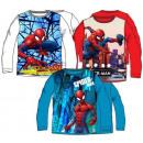 ingrosso Prodotti con Licenza (Licensing): T-shirt Spiderman manica lunga Spiderman , Spiderm