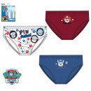 Kid's underwear, bottom Paw Patrol , Paw Patro