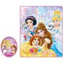 Polar Duvert Disney Princess , Princess 120 * 140c