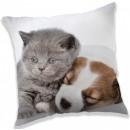 Perro, The Dog Cushion, Cojín 40 * 40 cm