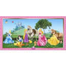 Disney Princess , Princess Wall Decor 150 * 77