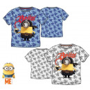 groothandel Licentie artikelen: Kinderen T-shirt, top Minions 3-8 jaar