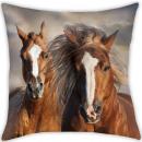 Rider, The Horses Pillow, Cushion 40 * 40 cm