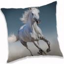 Horse, The Horses cushion, cushion 40 * 40 cm