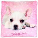 Dog, The Dog Cushion, Poduszka 40 * 40 cm