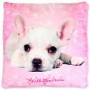 hurtownia Poduszki & koce: Dog, The Dog Cushion, Poduszka 40 * 40 cm