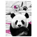 Teczka gumowa Panda A/4