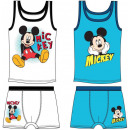 wholesale Licensed Products: Tricot + boxer set  set Disney Mickey 3-8 years