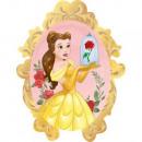 Disney Princess , Princess Folie Ballonnen 78 cm
