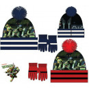 Children's hats & gloves Set Ninja Turtles