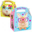 Zwierzęta Party box