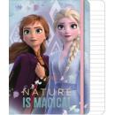 Disney Ice Magic A / 5 linia broszura 80 arkuszy