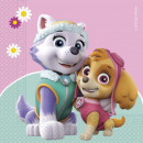 Paw Patrol Skye and Everest, Paw Patrol Napkin