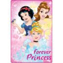 Polar Duvert Disney Princess , Princesses 100 * 15