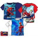 hurtownia Produkty licencyjne: T-shirt dziecięcy, top Spiderman , Spiderman 3-8 l