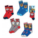 Children socks Patrol Paw, Paw Patrol 23-34