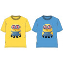 Kinder-T-Shirt,  Top Minions 4-12 Jahre
