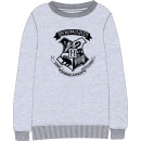 wholesale Pullover & Sweatshirts: Harry Potter Children's sweater 122-164 cm