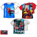 Kinder T-Shirt, Top Spiderman , Spiderman 3-8 Jahr