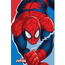 Handdoeken gezicht handdoeken, handdoek Spiderman
