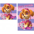 Facial towels, towel sets Paw Patrol