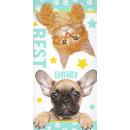 Kotek, Ręcznik plażowy dla psa 70*140cm