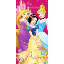 Disney Princesses in bath towels and beach towels