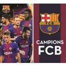 Hand towel facial towels, towels FCB, FC Barcelona