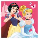 Disney Princesses Magic Hand Towel Wipe