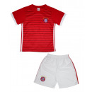 wholesale Sports Clothing: Together Jersey  Foot Child BENFICA. D63
