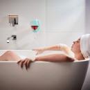 grossiste Chauffage & Sanitaire: Porte-verre à vin de baignoire ou de douche