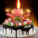 Musical Flower Magic Birthday Candle