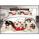Bedding set coton 160x200 3 pieces A-932-
